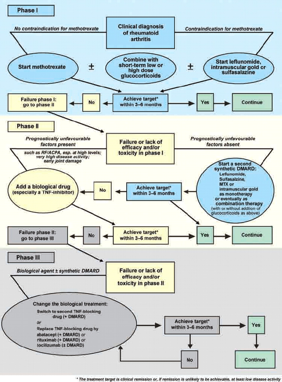 Eular Recommendations For The Management Of Rheumatoid Arthritis With Synthetic And Biological Disease Modifying Antirheumatic Drugs Annals Of The Rheumatic Diseases