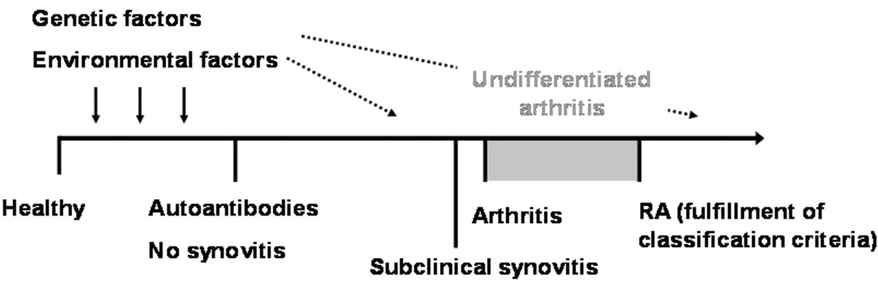Different stages of rheumatoid arthritis: features of the synovium