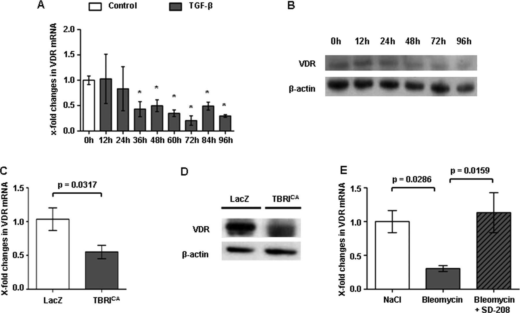 vitamin d receptor regulates tgf