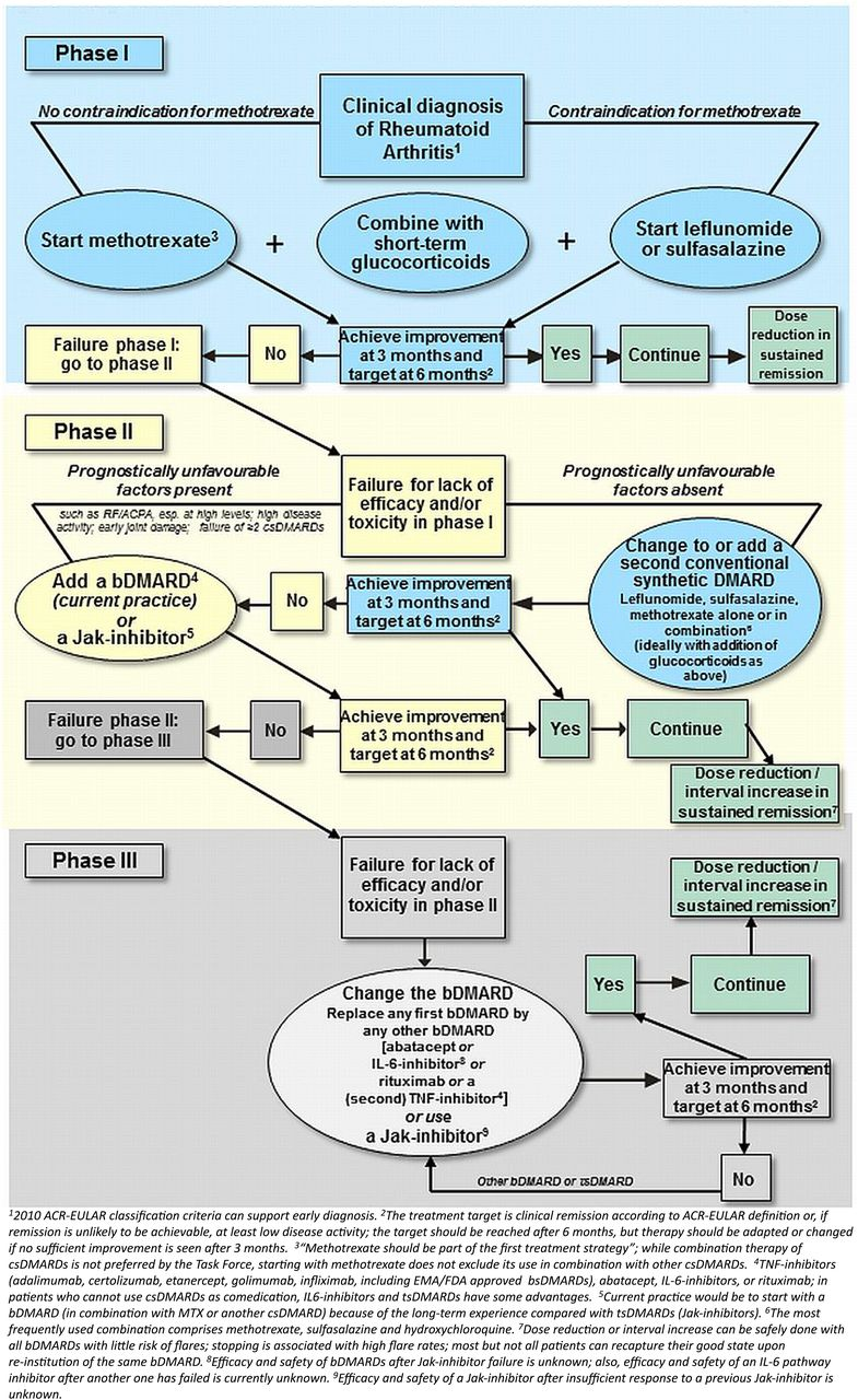 Eular Recommendations For The Management Of Rheumatoid Arthritis With Synthetic And Biological Disease Modifying Antirheumatic Drugs 2016 Update Annals Of The Rheumatic Diseases