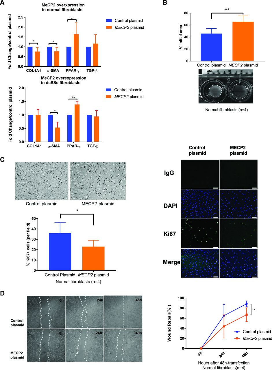 Methyl-CpG-binding protein 2 mediates antifibrotic effects