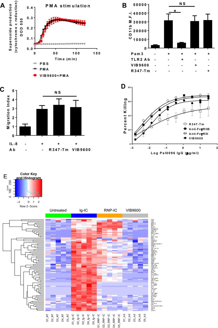 Humanised effector-null FcγRIIA antibody inhibits immune
