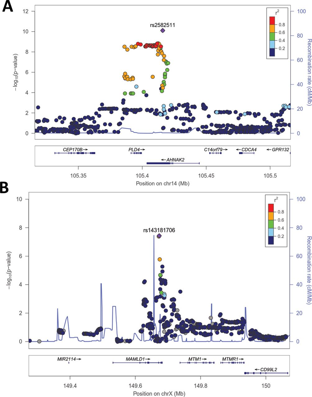 PLD4 is a genetic determinant to systemic lupus