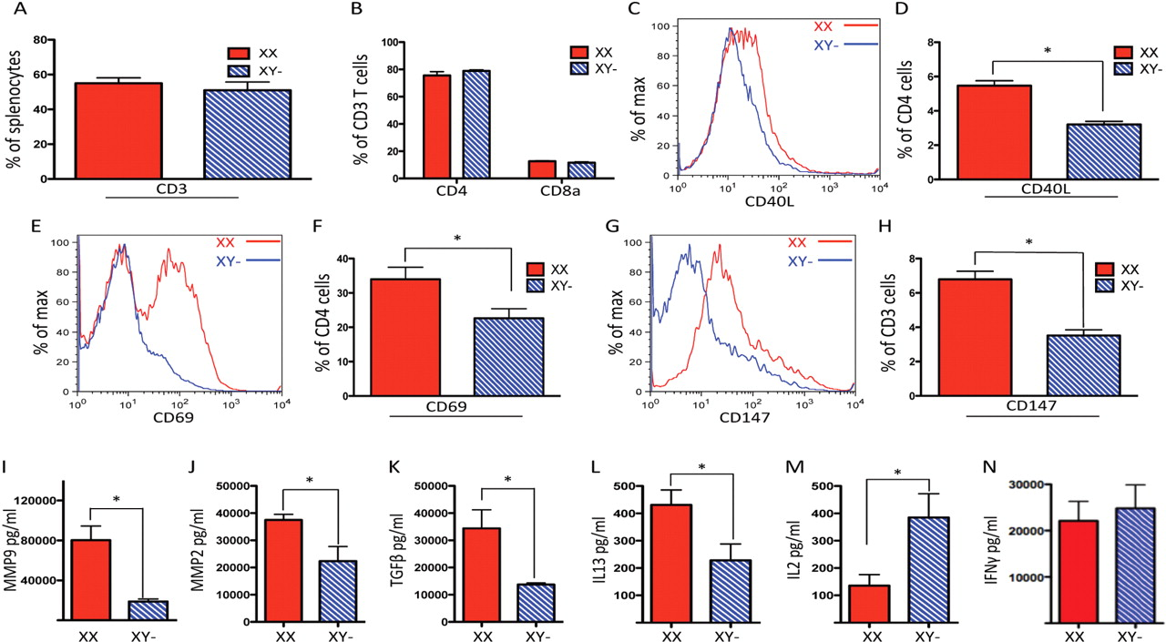 T lymphocytes have a more pro-inflammatory phenotype in the XX sex ...