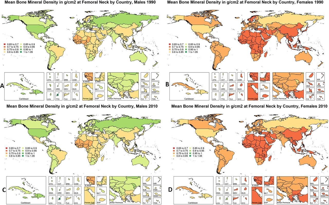 The Global Burden Attributable To Low Bone Mineral Density Annals