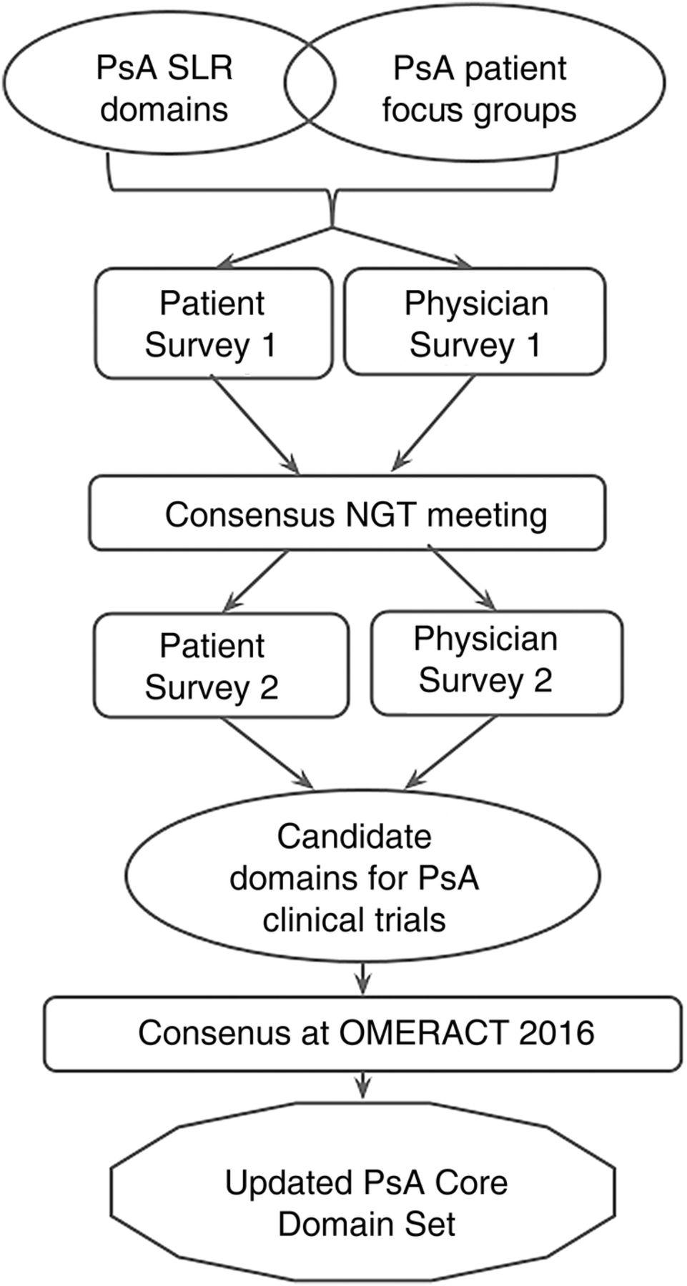 Nominal group technique process