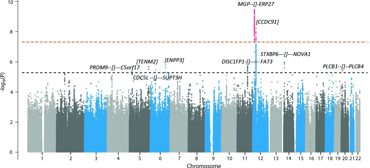 Genome Wide Association And Functional Studies Identify A Role For