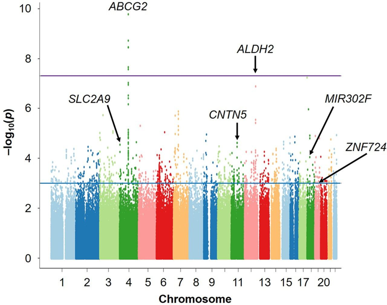 Discovery Of The First Genome Wide Significant Risk Loci For Attention >> Genome Wide Association Study Revealed Novel Loci Which Aggravate